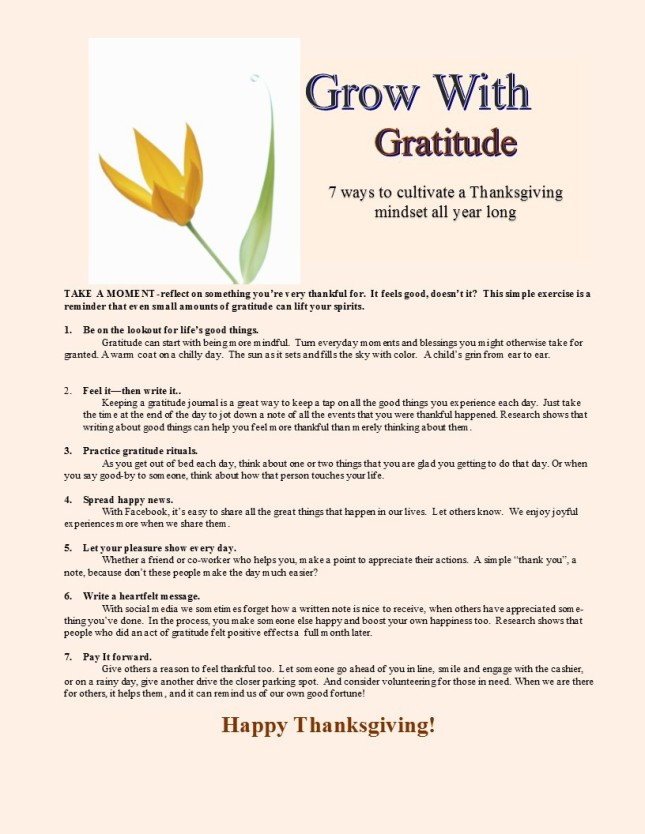 Gratitude Blog Post to WordPress IDL